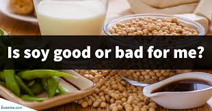 soya good or bad