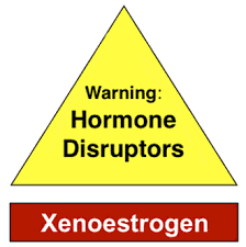 xenoestrogens and health