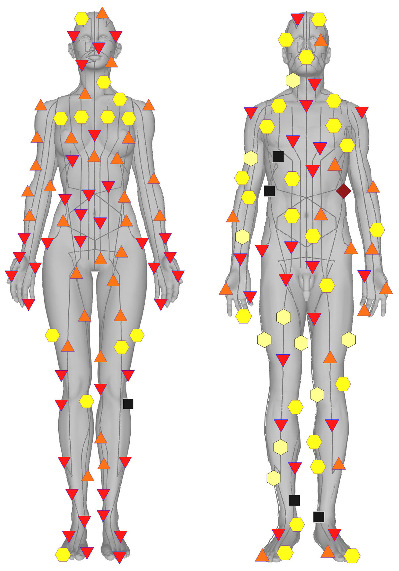 Metatron or Non-linear Scanning (NLS) Scans Body in 3D | Natural
